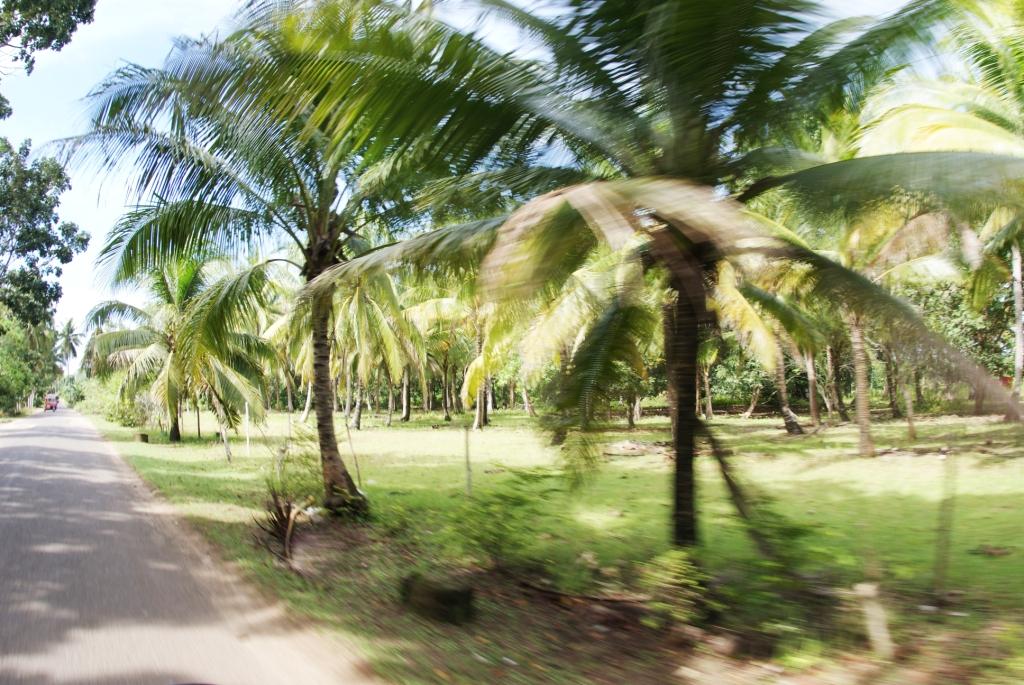 Филиппины, о.Панглао